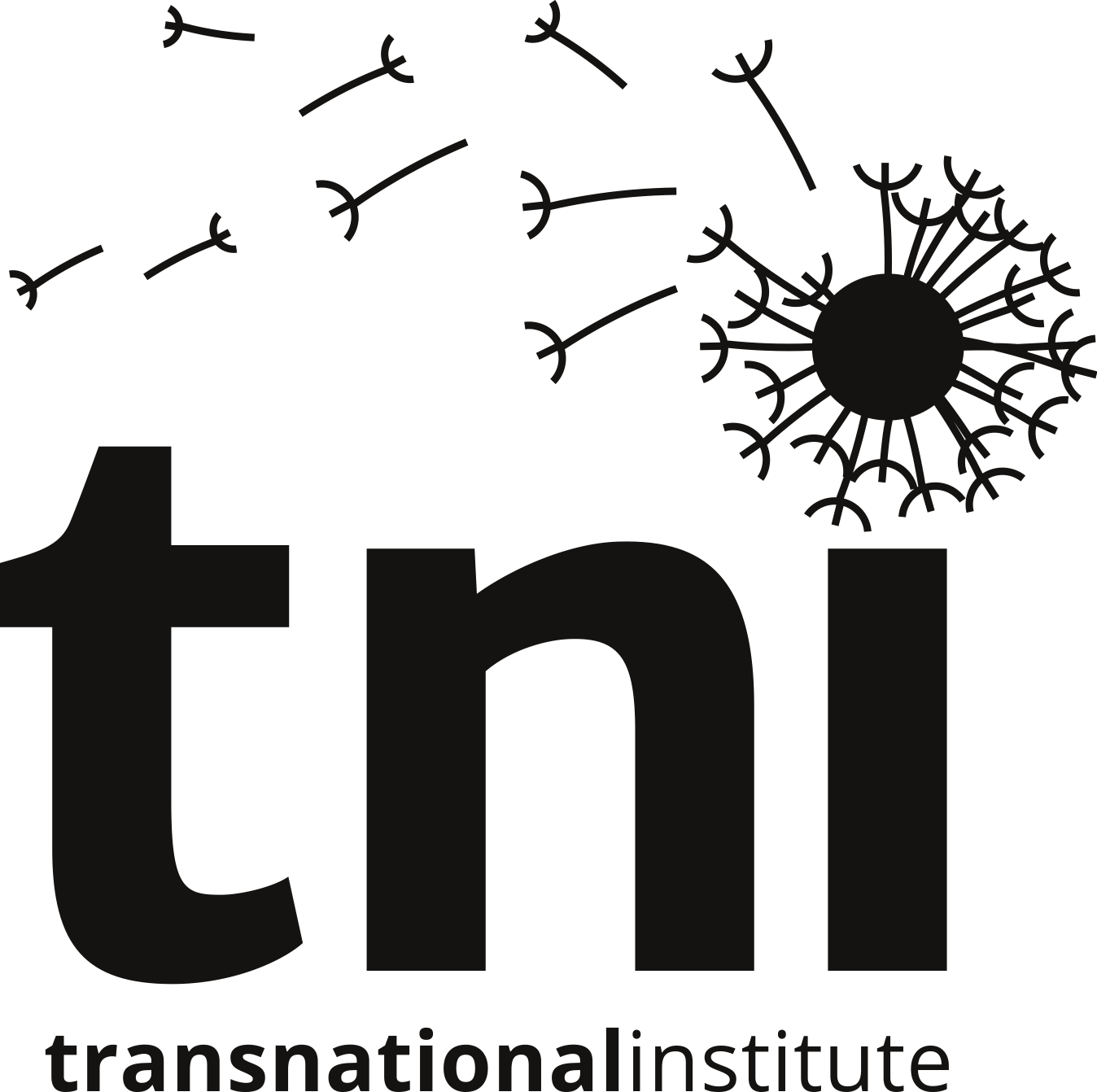 The Transnational Institute